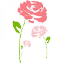 HOLA ROSE  - Увлажняющая серия  с экстрактом розы